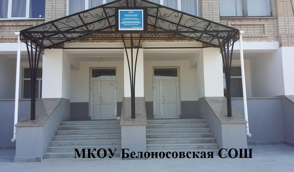 МКОУ Белоносовская СОШ_1.png