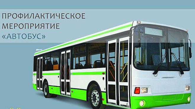 pikalevo-buses.jpg